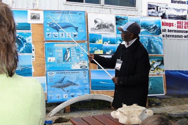 Vor der Bootstour erhalten wir Informationen über Wale