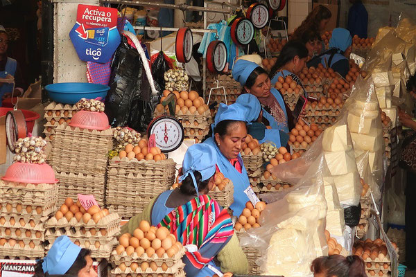 Die Eier-Abteilung - die teuerste Sorte kostet 12 Rappen das Stück
