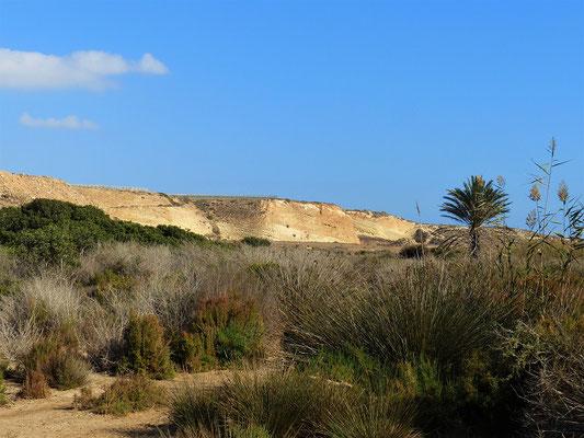 Spaziergang im Reserva Natural/Naturpark Punta Entinas....