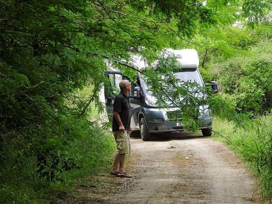Die Durchfahrt zur Bodega ist schon fast frei gesägelt....