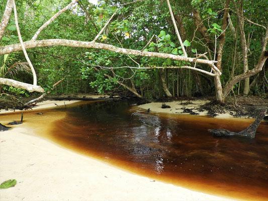 Der erste Fluss, den wir überqueren müssen....
