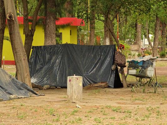....lebt jetzt auf dem Camping in Santiago del Estero