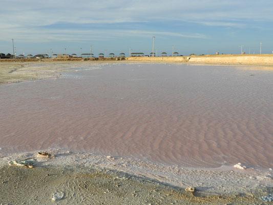 Laguna Rosada, gefärbt durch eine Alge