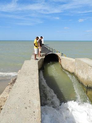Das Meerwasser wird in die Becken gepumpt....