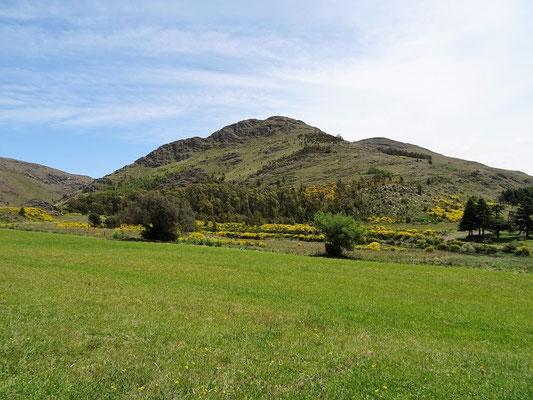 Cerro Bahía Blanca - den wollen wir besteigen