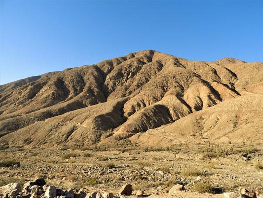 Wieder unten in der Wüste in Nazca