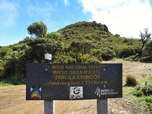 Rauf geht's zum Cerro La Asunción....