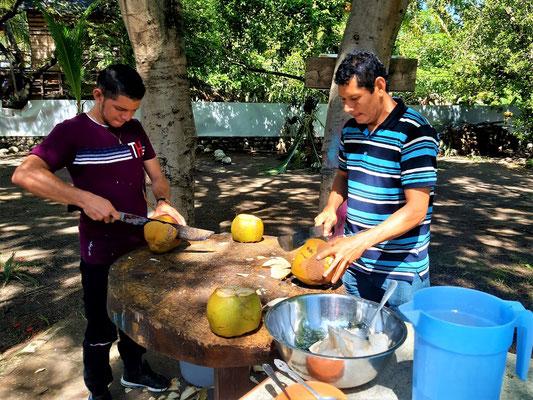 Die Cocoland Kokosnüsse werden verarbeitet