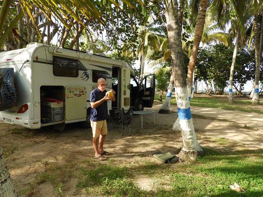 Zur Begrüssung gibt es eine Kokosnuss