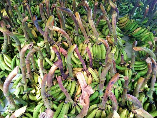 Am Bananen-Markt