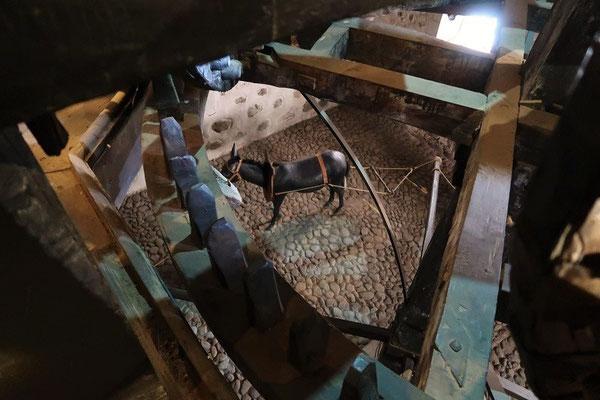 ....angetrieben wurden die Zahnräder von vier Maultiere im Keller