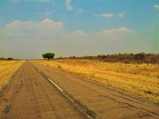 Unterwegs nach Okahandja