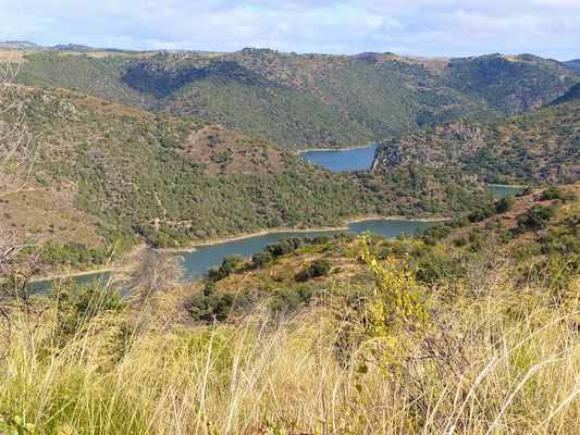 Der Duero/Douro unter uns....
