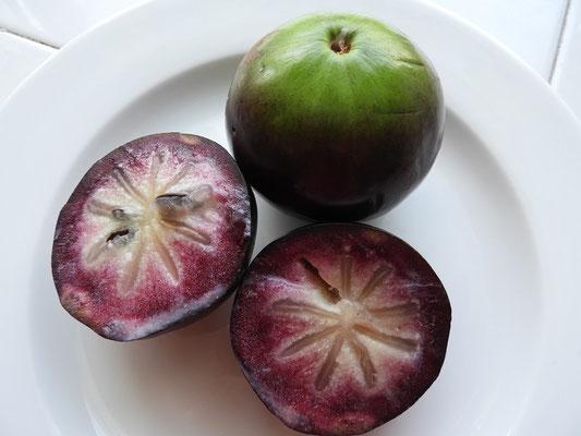 Caimito - Frucht eines tropischen Obstbaumes