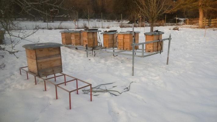 Transportgestell für Bienen mit unseren Ablegern von 2016 - 01/2017