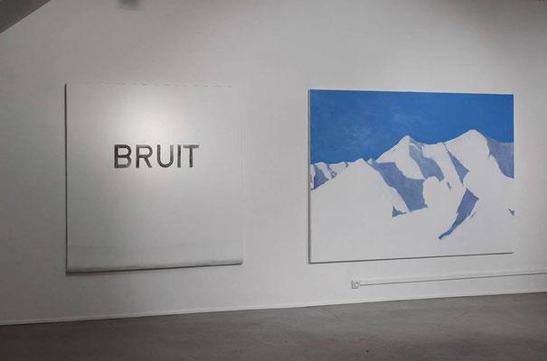 Exposition au Frigo. Albi Tarn. Février 2014.