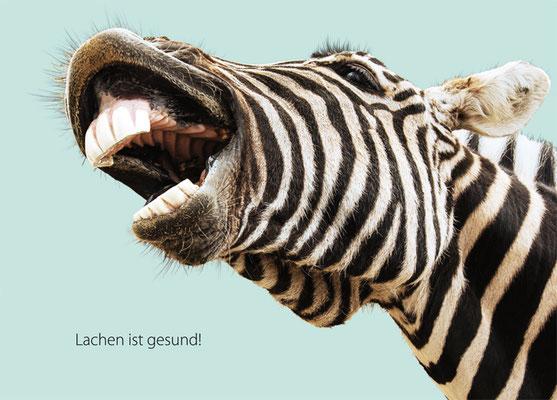 Recallkarte Zahnarztpraxis zebra lustig Terminerinnerung nexilis