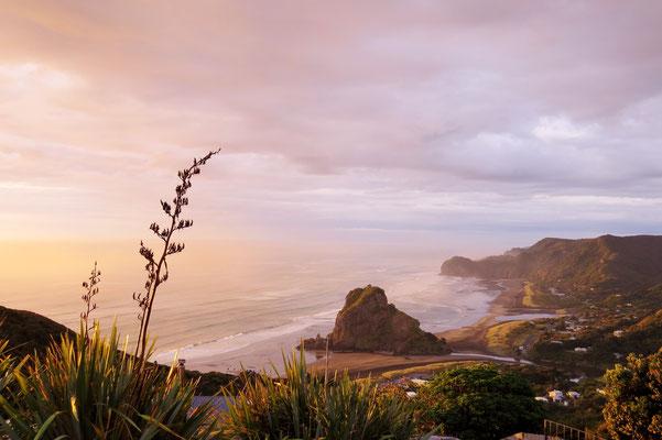 Neuseeland Piha