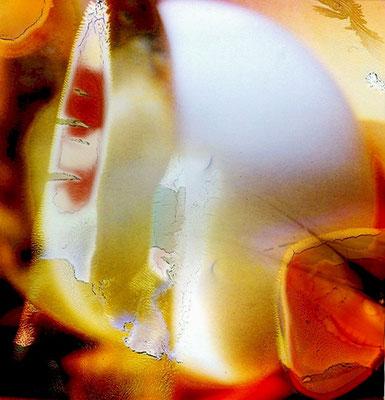 Lichtbild 11 Direktdruck hinter Acrylglas 65 x 67,7 cm