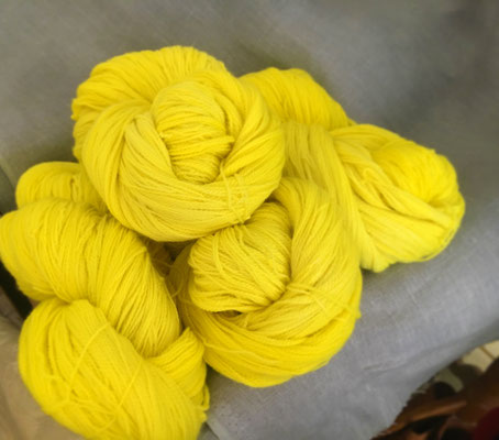 welthase angel lace, lemon
