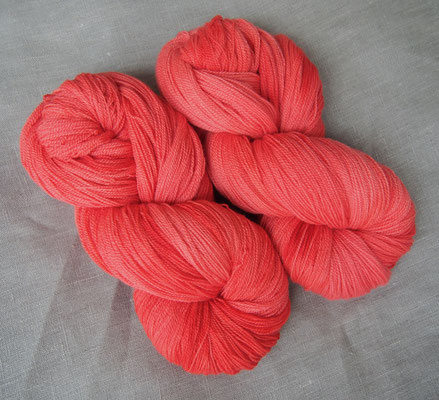 angel lace coral