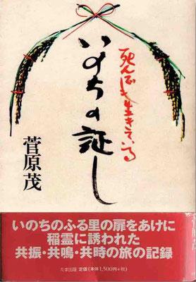 随想『死んでも生きている/いのちの証し』共時性現象とは何か。表紙の稲穂は本作と著者夫妻を象徴している。