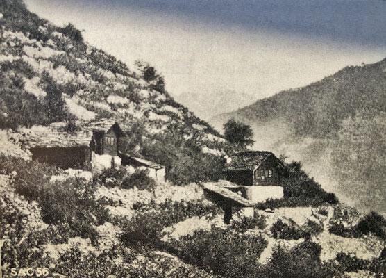Rebhäuschen im Riedboden in Zeneggen (Quelle: Alpinmonographie Stebler, 1921)