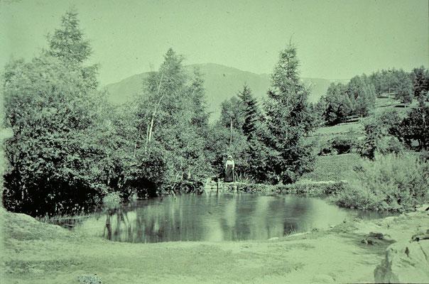Bielweiher in Zeneggen (Quelle: Alpinmonographie Stebler, 1921)