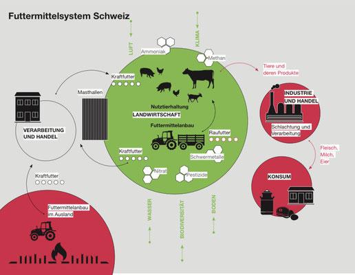 """Quelle: GREENPEACE, 2.2.2021, """"Die schweizer Landwirtschaft lebt über ihre Verhältnisse"""" (PDF)"""