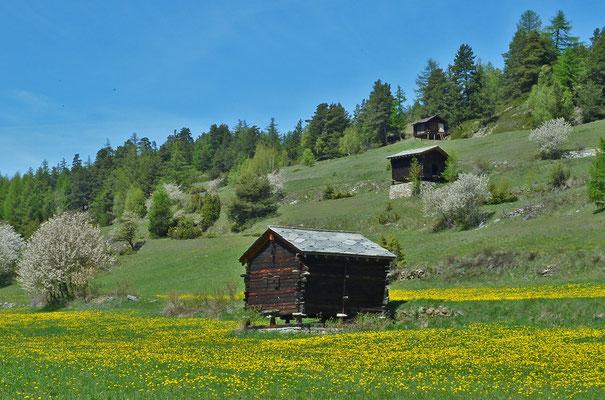 Stadel und Magerwiesen im Bereich Rohr und Riebenäcker
