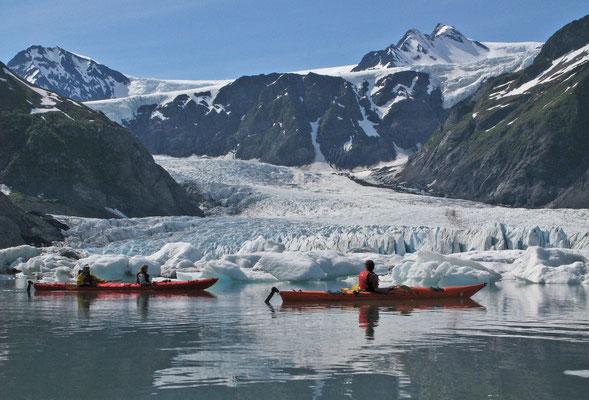 Pedersen Glacier (Aialik Glacier Bay / Kenai Fjords NP, Alaska)