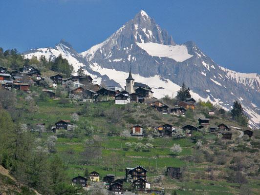 Zeneggen mit Bietschhorn (Berner Alpen)