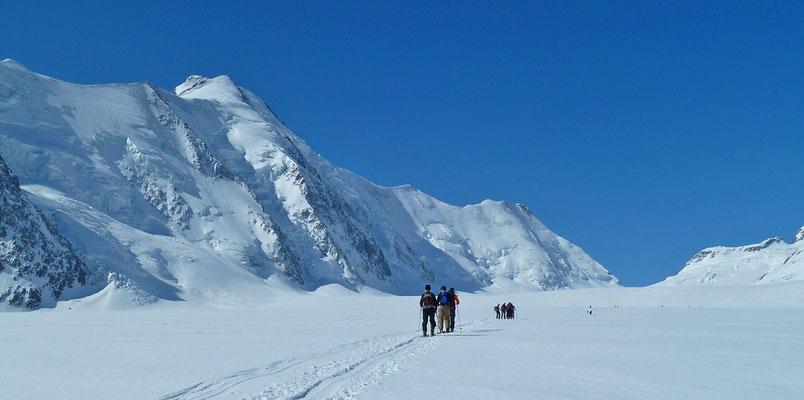 auf dem Aletschfirn  - Aufstieg vom Konkordiaplatz zur Lötschenlücke (Lötschentour, Berner Alpen)