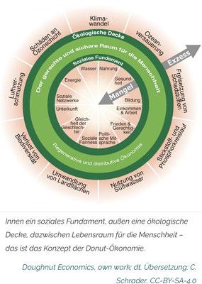 """aus C. Schrader, Juni 2020, RiffReporter.de,   """"Was die Donut-Ökonomie bedeutet"""""""