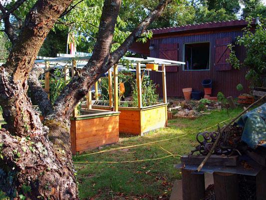 Garten vom Kirschbaum aus