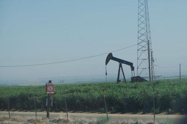 カリフォルニアの風景