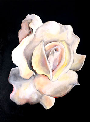 White Rose of Cairo • 30 x 40 cm • oil on canvas • 2018