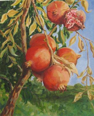 2012, Granatäpfel, € 850