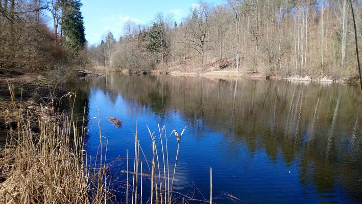Wasserbachsee