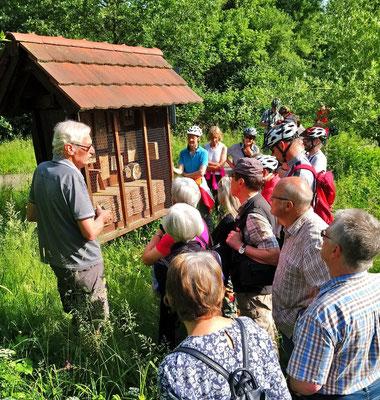 Die Wildbienenhotels der Umweltgruppe sind mittlerweile wegen des großen Erfolgs ein mehrfach kopiertes Filialunternehmen