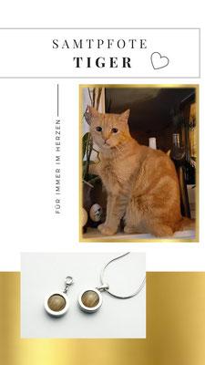 Kater Tiger, schmerzlich vermisst, in zwei wunderhübsche Schmuckstücke aus Edelstahl verewigt. Frauchen hat ein Teil von dir jetzt immer bei sich.