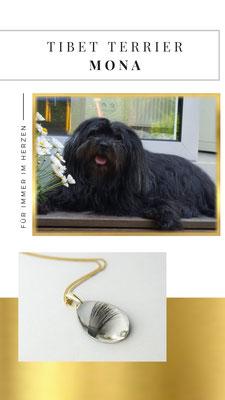 Mona, eine kleine bezaubernde Tibet Terrier Hündin. Ihr Frauchen Kerstin hat sich diesen wunderhübschen Anhänger anfertigen lassen um Mona weiterhin bei sich zu haben. RIP du kleiner Schatz!