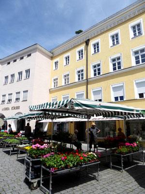 Ludwigsplatz, der grüne Markt bietet allerhand regionale Köstlichkeiten