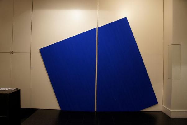Colle de peau et pigments sur toile - 250x270x5 cm