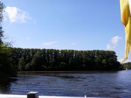 Lindenallee vom Wasser aus gesehen