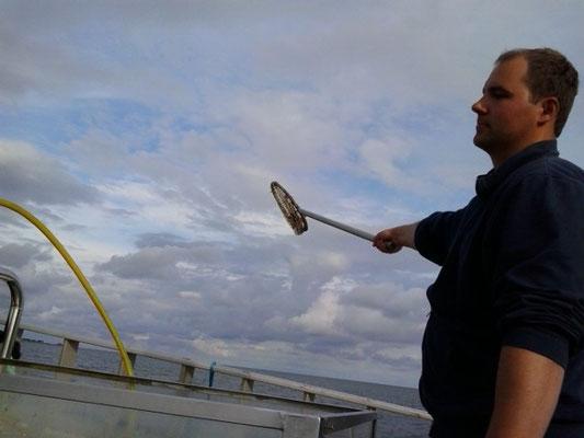 Der Fischer wirft den beifang über Bord