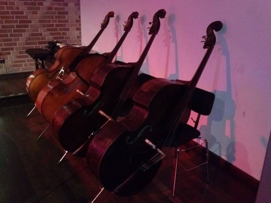 Kontrabass E-Bass Unterricht Nürnberg