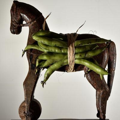 Fève de cheval