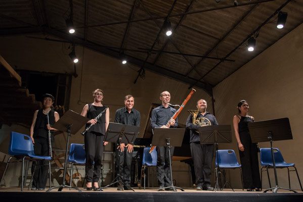 Quintette a vent Artecombo, Hervé Billaud p 27/7/17