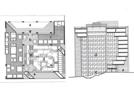 左1階平面図 右 断面図(地下は省略) a車寄せ b入口ホール c執務、応接スペース d植栽ゾーン上部吹き抜け e直進階段 f食堂